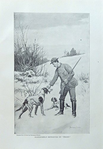 Rare 1897 Antique (Hermann Simon,1897 rare antique painting (Handsomely retrieved by Frost) oringial 1897outing Magazine Print Art)