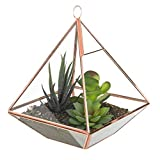MyGift 8-Inch Glass Pyramid Planter Terrarium with Rose Gold-Tone Metal Frame