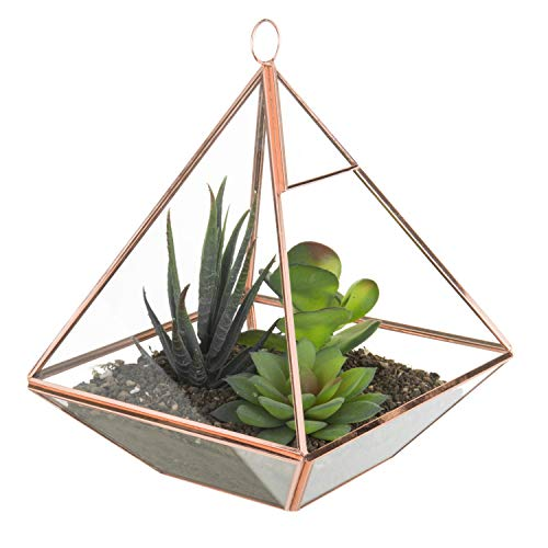 - MyGift 8-Inch Glass Pyramid Planter Terrarium with Rose Gold-Tone Metal Frame