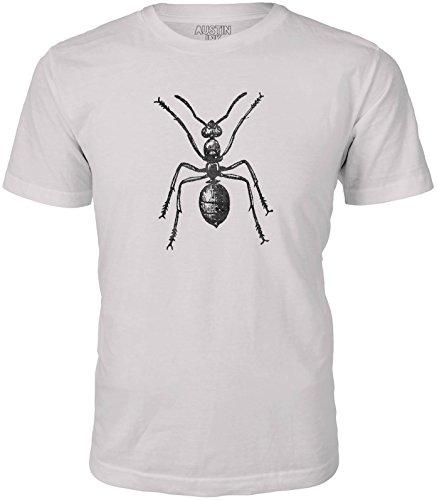 Retro Ant Farm - 4