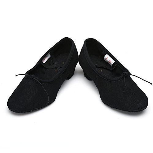 HROYL Mujer Zapatos de Baile Latino/Zapatos de Baile Maestro Cuero/Tela Salón de Baile 255 Negro