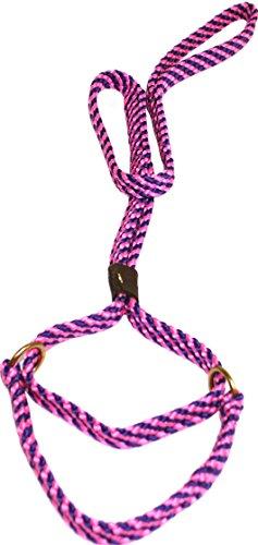 - Lone Wolf 5/8 x 6' Flat Braid Martingale Leash Pink/Purple Spiral