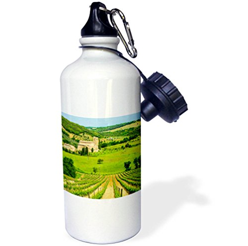 3dRose Danita Delimont - Vineyards - Italy, Tuscany, Montalcino, Abbey, vineyard - 21 oz Sports Water Bottle (wb_277584_1) by 3dRose