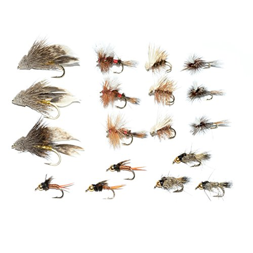 Waterproof fly box and trout fly starter assortment for Beginning fly fishing