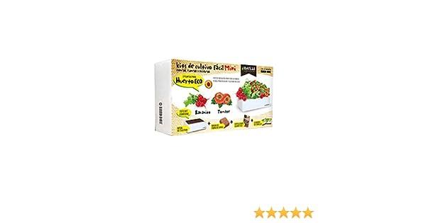 Huerto Urbano - Seed Box Mini Huerto - Batlle: Amazon.es: Jardín