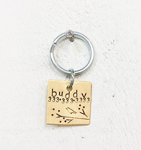 Pretty Bird Pet Tag by Hattie Rex