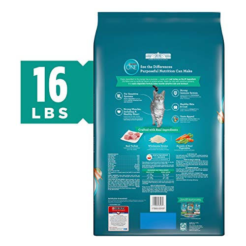 Purina ONE Sensitive Stomach, Sensitive Skin, Natural Dry Cat Food, Sensitive Skin & Stomach Formula - 16 lb. Bag