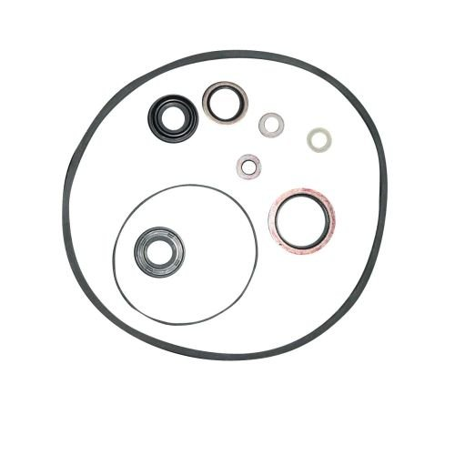 Complete Tractor 1201-1003 Pump Seal Kit (P S For Massey Ferguson Tractor 135 Others-1810529M91)
