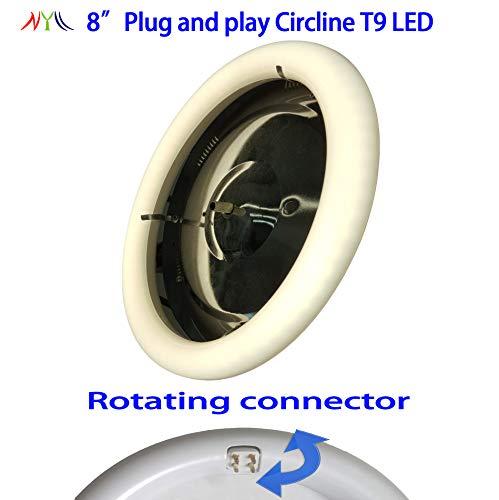 22w Circline T9 Lamp - NYLL - 8 Inch/ 8