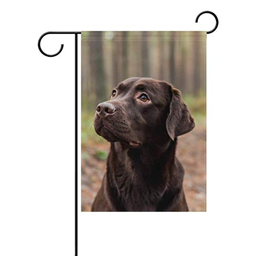 AnleyGardeflagsU Chocolate Labrador Sitting The Forest Polyester Garden Flag Banner 12 x 18 Inch for Outdoor Home Garden Flower Pot Decor ()