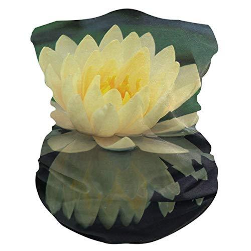 Lotus Flowers Yellow Headband Womens Bandana Multifunctional Mens Balaclava, Neck Warmer, Face Mask, Neckerchief Aliceband