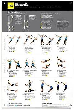 TRX Entrenamiento Póster de fortalecimiento de Todo el Cuerpo, Todo el Apoyo Visual Que Necesitas en un único y práctico póster