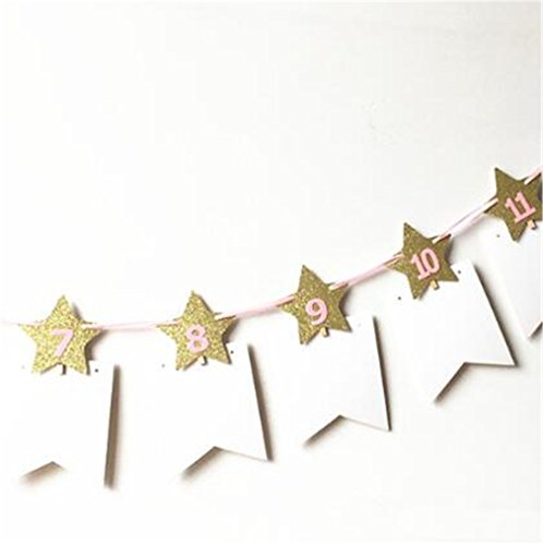 Baby 1St One Year Photo Booth Birthday Banner DIY Album Monthly Paperboard Baby Photo Album Show Party Decoration Supplies gold star