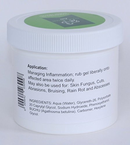 Equestrain AID INFLAACTIVE Gel - Easy to Handle 12oz Size; Superior horse remedy formulated from a unique African BUCHU herb extract. A natural anti-inflammatory, antibactrial and anti-fungal agent. by Equestrian AID (Image #2)