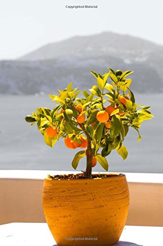 Download Miniature Fruit Tree on a Balcony in Greece Travel Journal: 150 Page Lined Notebook/Diary pdf