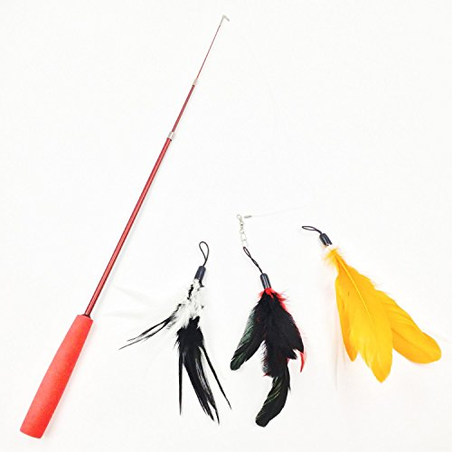 [AIDIYA] Retractable Cat Dangler Toy Training Telescopic Natural Feather Wand Cat Toy with 3 Bird Feather Replacement Pack Cat Feather Toy free shipping