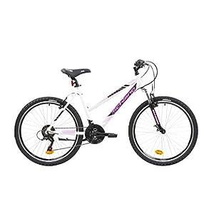 41wZz8edKNL. SS300 F.lli Schiano Range, Bici MTB Women's, Bianco-Rosa, 26''