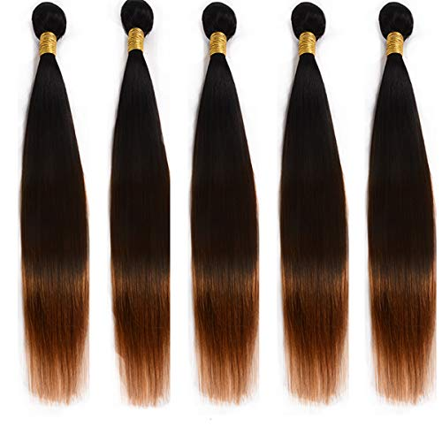 """Ombre Hair Bundles Two Tones Synthetic Hair Bundle Silky Straight Hair Bundles 18"""" 5 Bundles 300Gm High Temperature Synthetic Hair Extensions for Womens from DreamDiana"""