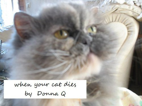 when your cat dies: new and much improved version