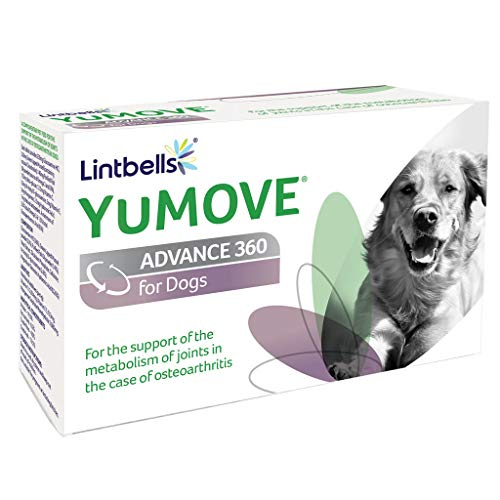 - Yumove Lintbells Advance 360, for Dogs, 120 chewable Tablets
