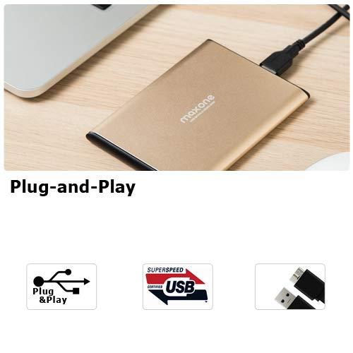 Externe Festplatte Tragbare 160GB - 2,5Zoll USB 3.0 Backups HDD Tragbare für TV,PC,Mac,MacBook, Chromebook, Wii u, Laptop,Desktop,Windows (160GB Gold)