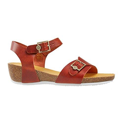 Dal tacón Zapatos de Van mujer xwYzSXqq