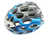 Hezon Durable Adult Honeycomb PC Helmet Porous Mountain Bicycle Helmet Bike Helmet(Blue)