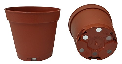 40 NEW 2 Inch Plastic Nursery Pots ~ Pots ARE 2 Inch Round At the Top and 1.9 Inch Deep Color: Terracotta ()