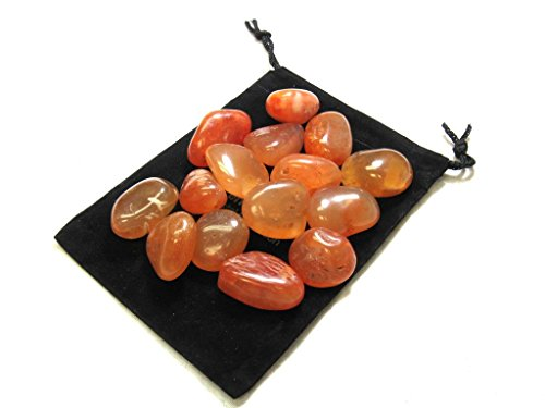 Zentron Crystal Collection: 1/2 Pound Tumbled Natural Carnelian Stones by Zentron Crystal Collection