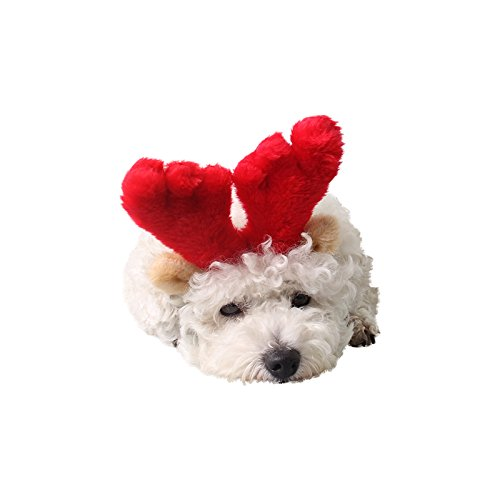 Large Lflower Christmas Reindeer Antlers with Ears for Large Dogs