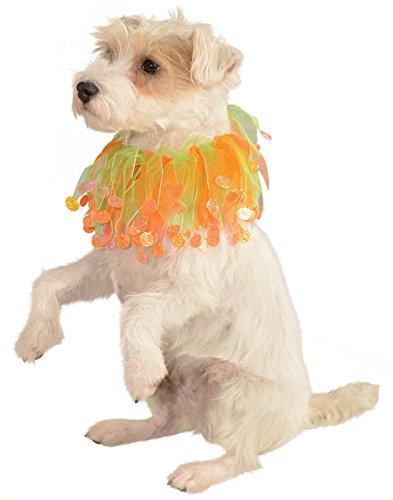 Rubie's Pet Costume Collar, Small to Medium, Green and Orange Pumpkin]()