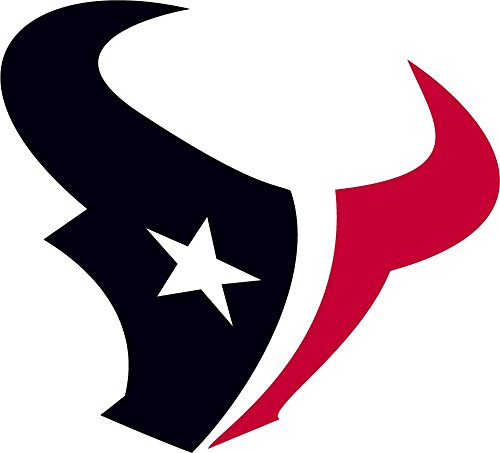 Houston Texans NFL Football Sport Art Decor Vinyl Sticker 13'' X 12''