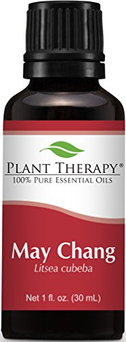 Plant Therapy Litsea Undiluted Therapeutic