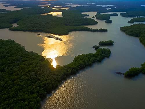 Everything Always Now: Ten Thousand Islands, Florida (Cobia Fishing)