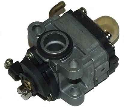 Carburador Walbro desbrozadora/podadora hornsea WY: Amazon.es ...
