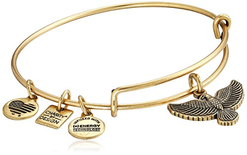 Alex and Ani Charity By Design Spirit of The Eagle Charm Expandable Rafaelian Gold Bangle Bracelet (Eagle Gold Eagle)