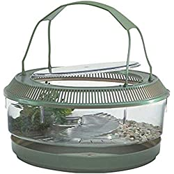 Lee's Fire Belly Landing, Round w/Lid, Handle, Tray, Plant
