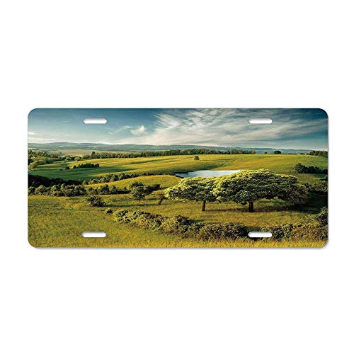 Kingsinoutdoor Green,Scenic Scenery Hilly Landscape with Lake and Blue Cloudy Sky Trees Meadow Countryside,Green Blue Aluminum License Plate Cover Tag Sign Decoration 12 x 6 in
