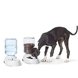AmazonBasics Gravity Pet Food Feeder and Water Dispenser Bundle, Large (2.5-Gallon Capacity)
