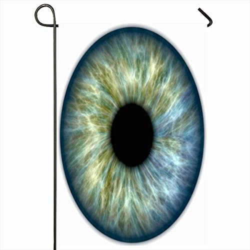 """Ahawoso Outdoor Garden Flags 12""""x18"""" Inch Color Eye Blue Green Human Iris Health Eyeball Anatomy White Detail Pupil Vertical Double Sided Home Decorative House Yard Sign from Ahawoso"""