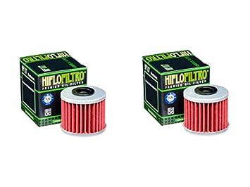 Cantidad 2 - HiFlo filtro de aceite de moto hf117: Amazon.es: Coche y moto