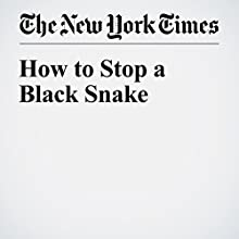 How to Stop a Black Snake Other by Louise Erdrich Narrated by Fleet Cooper