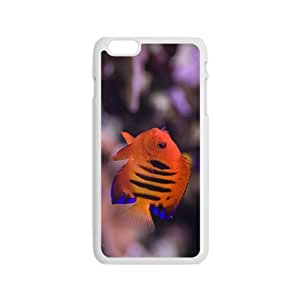 The Charming Fish Hight Quality Plastic Case for Iphone 6