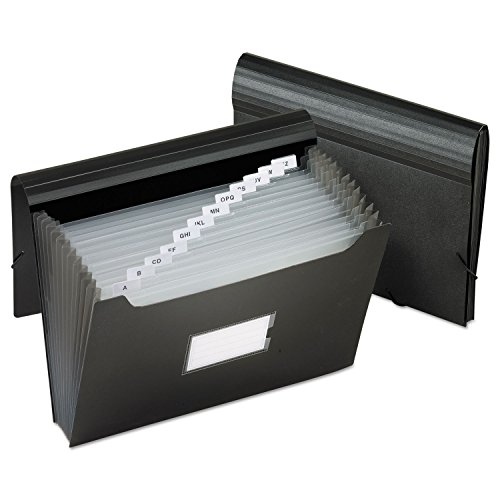 Pendaflex 82013 Jumbo 13-Pocket File, Poly, Letter, ()