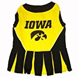 Iowa Hawkeye Dog Cheer Leading Dress & Leash Set Size SM