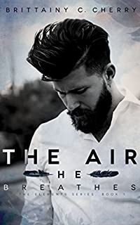 The Air He Breathes by Brittainy Cherry ebook deal