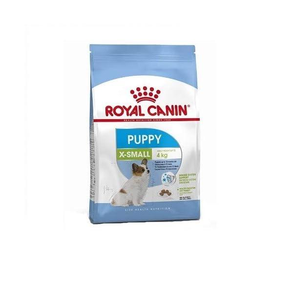 Royal-canin-X-small-Junior-pienso-para-perros-minitoy