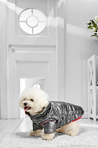 Boston Terrier Costumes (Small Dog Winter Jacket  For Bichon Boston Terrier Cavalier King Charles Corgi (Medium Size, gray, red))