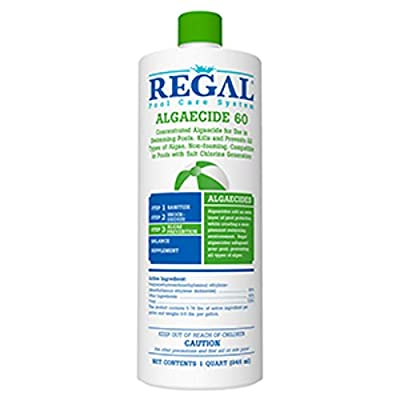 Regal Algaecide 60 for Swimming Pools & Spas : Garden & Outdoor