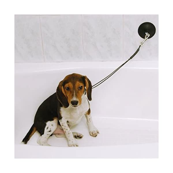 Pro Guard Stay-N-Wash Dog Grooming Tub Restraint and Pet Bathing Tether Click on image for further info. 4